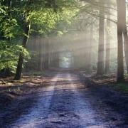 path to spiritual freedom